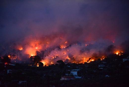 Hy Lạp: Cháy rừng nghiêm trọng làm 74 người thiệt mạng, hơn 180 người bị thương