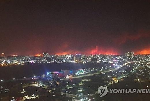 Hàn Quốc: Cháy rừng khiến hàng hàng nghìn người tháo chạy